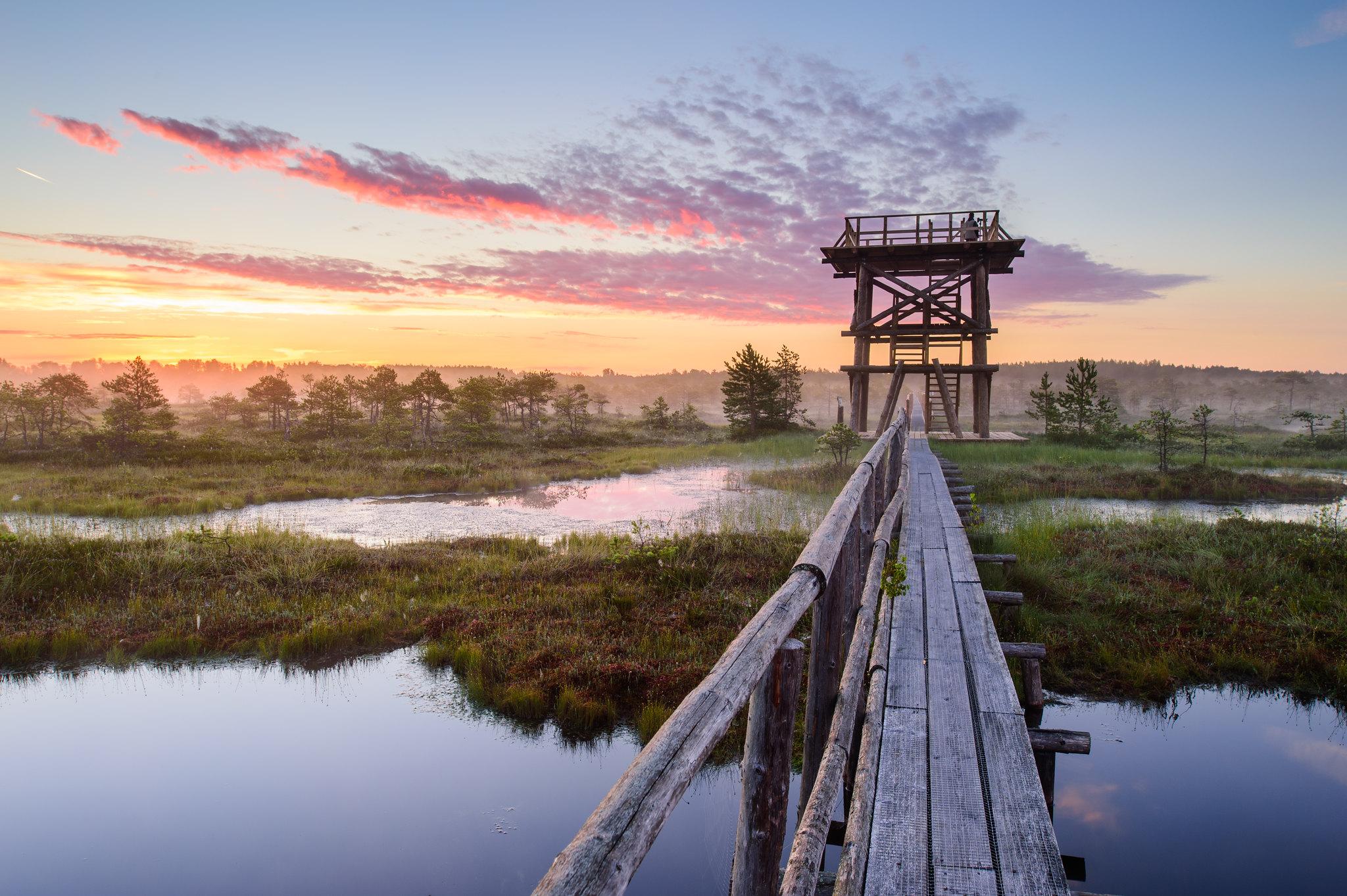 Aizraujošas dabas takas Igaunijā
